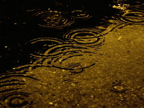 enjoying rain wallpaper with resolution 365x358 for your desktop, mobile